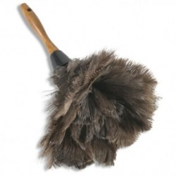 ostrich-feather-duster